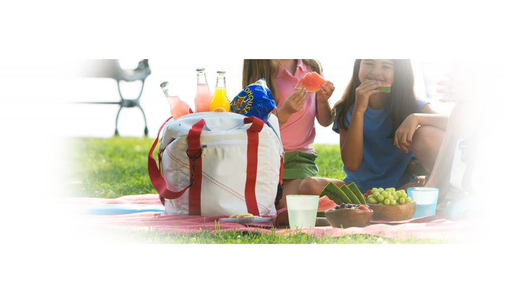 Newport Cooler Bag - 12 Pack  picnic